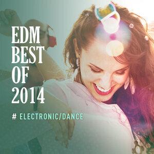EDM BEST OF 2014