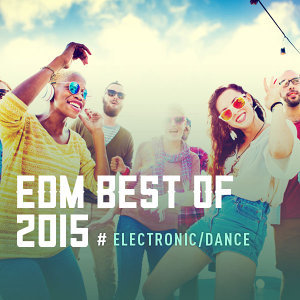 EDM BEST OF 2015