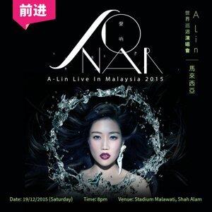 A-Lin《Sonar声呐》2015世界巡演 特别歌单