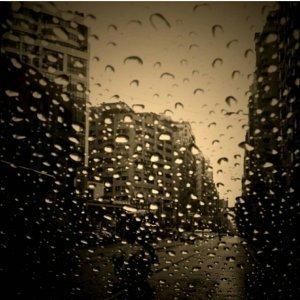 雨天的陪伴