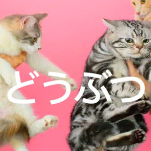 動物系搖滾派對:日語