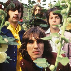 愛與和平就係The Beatles!