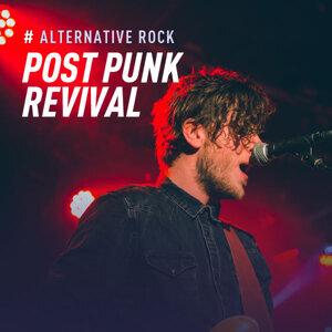Alternative Rock:Post Punk Revival