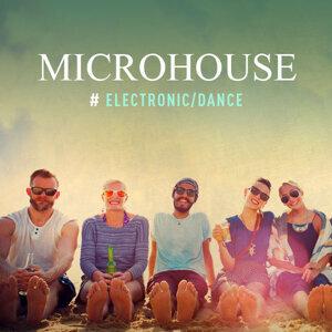 Electronic:Microhouse