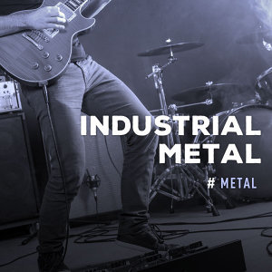 Metal:Industrial Metal