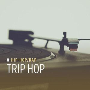 Hip Hop:Trip Hop