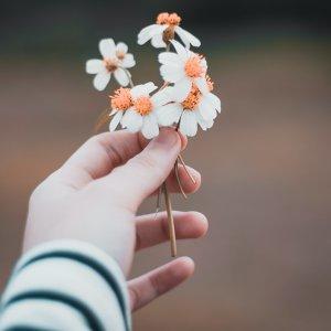 春神來了,我的愛情悄悄萌芽了❤