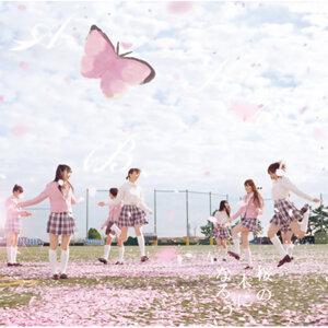 女子ボーカルで聴く桜ソング。