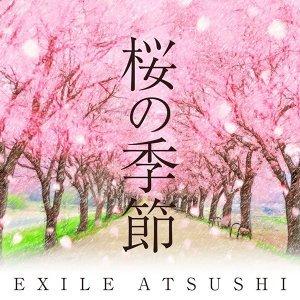 櫻花季 賞音趣