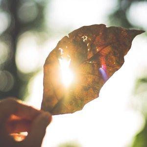 只想做你的太陽!關於「太陽」的30首華語歌