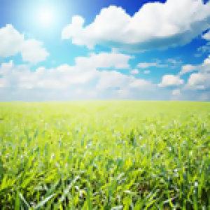 風和日麗天氣晴