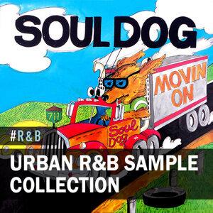 Urban R&B: Sample Collection
