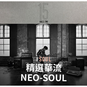 Chinese Neo Soul 精選華流Neo-Soul