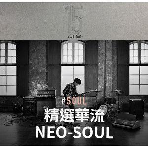 Chinese Neo Soul 精選華流Neo-Soul
