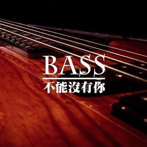 【推薦】少了Bass就不完整了