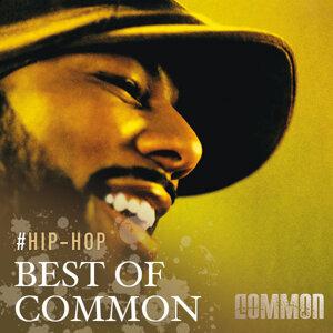 Hip Hop Conscious: Best of Common