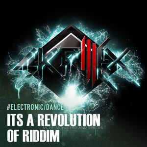 Its A Revolution of Riddim