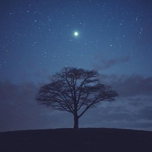 最閃亮的那顆星星是你 #星星串燒歌曲