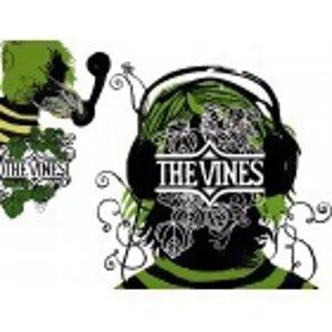 番覆搖滾:THE VINES