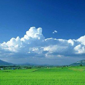 驟雨之後就是晴空萬里 #花東歌手好聲音