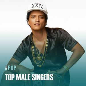 Top Male Singers