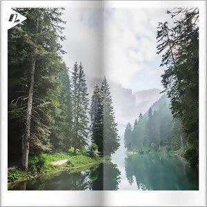 【野營必聽】秋日森林小旅行