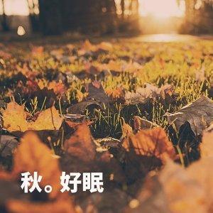 秋夜好睏好眠好好睡