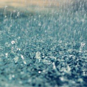 今天''濕''速列車了嗎?#大雨