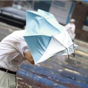 風雨生信心 颱風天暴雨天老闆發怒天通通可以聽