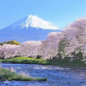 日本人票選:對日本最有影響力歌曲