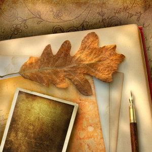 秋的愛情回憶