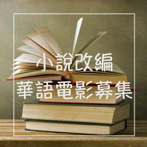 由小說改編的華語電影