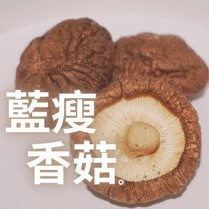 藍瘦 香菇,療癒系韓樂來陪伴!