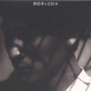 劉德華 - 忘情水