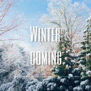 Winter coming 冬天怎麼還不來?