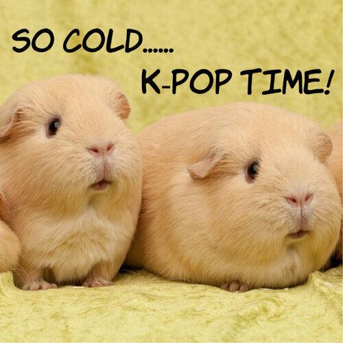 好冷好想睡就聽這些K-POP醒醒腦!