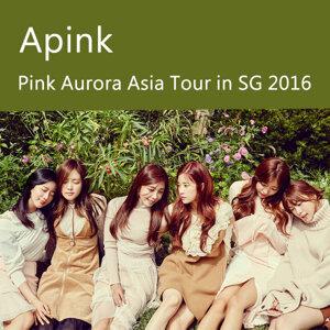Apink - Pink Aurora Asia Tour in SG 2016