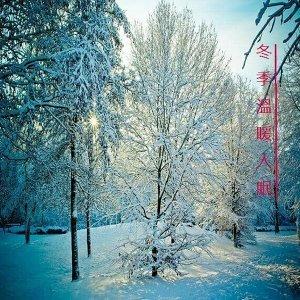 冬季溫暖入眠