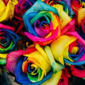 在愛之前 人人平等