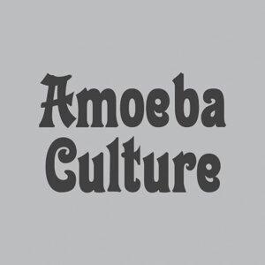 新貴搖擺代表 Amoeba Culture