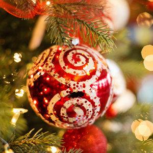 耶誕大餐∞聽覺饗宴