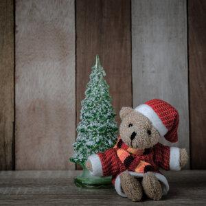 聖誕注定一人..