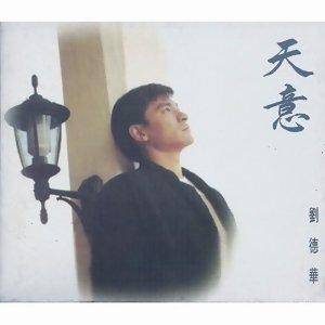 劉德華 (Andy Liu)