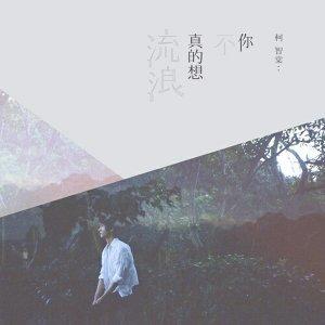 中文獨立音樂