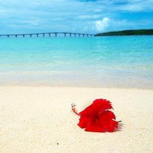 想軟爛在沖繩海邊放空