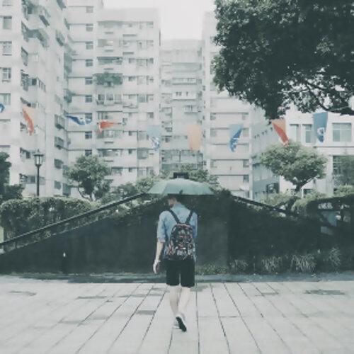 下雨了,我的心隨雨滴墜落。