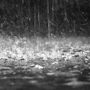 下雨天的黑樂☔️