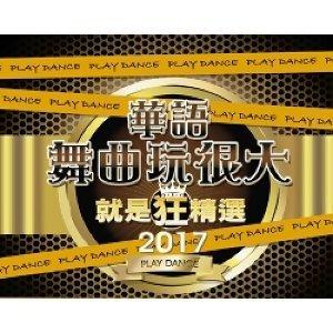 金度潤 (Kim Do Yoon) - 2017華語舞曲玩很大就是狂精選