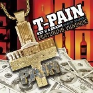 T-PAIN(情色接班人)