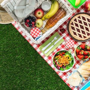 一起去野餐吧!